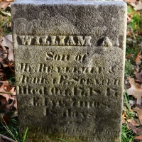 no-23-william-anthony